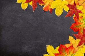autumn-1657662_640